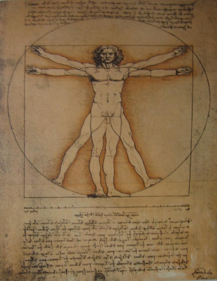 Da Vinci Vitruvianischer Mensch